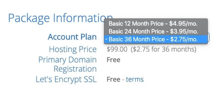 5. Select your Hosting plan.