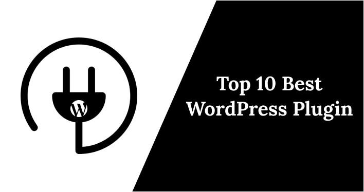 WordPress plug in